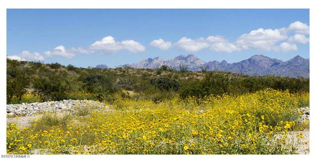 5615 Corte Conejos, Las Cruces, NM 88011 (MLS #2003144) :: Better Homes and Gardens Real Estate - Steinborn & Associates