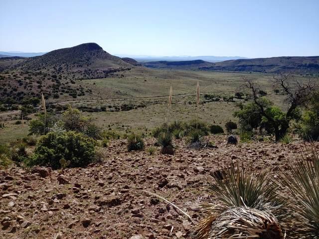 Lot 3 Berrenda Creek Ranch 1A, Hillsboro, NM 88042 (MLS #2003170) :: Agave Real Estate Group