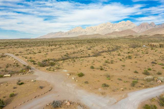 5011 Silver King Road, Las Cruces, NM 88011 (MLS #2003244) :: Better Homes and Gardens Real Estate - Steinborn & Associates