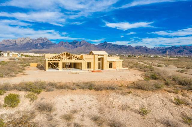 8670 Mystic View Court, Las Cruces, NM 88011 (MLS #2003275) :: Arising Group Real Estate Associates