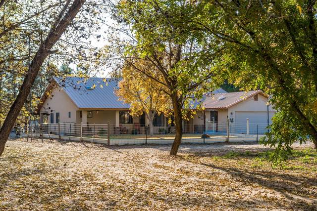 229 Ohair Drive, Las Cruces, NM 88001 (MLS #2003299) :: Las Cruces Real Estate Professionals