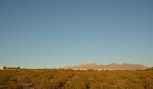 5495 J H Sharp Road, Las Cruces, NM 88011 (MLS #2003310) :: Better Homes and Gardens Real Estate - Steinborn & Associates