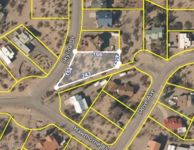 201 Skyline Drive, Elephant Butte, NM 87935 (MLS #2003364) :: Las Cruces Real Estate Professionals