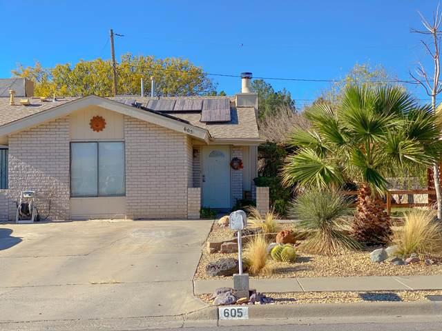 605 Sheryl Way, Las Cruces, NM 88001 (MLS #2003368) :: Las Cruces Real Estate Professionals
