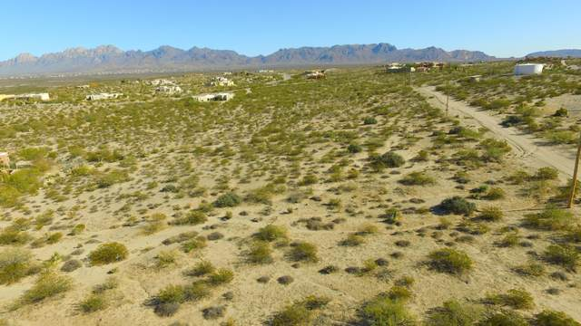 5587 Charles Russell Road, Las Cruces, NM 88011 (MLS #2003398) :: Better Homes and Gardens Real Estate - Steinborn & Associates