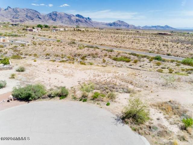 4987 Homestead Court, Las Cruces, NM 88011 (MLS #2003416) :: Agave Real Estate Group