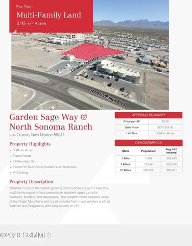 0000 Tbd, Las Cruces, NM 88011 (MLS #2003435) :: Better Homes and Gardens Real Estate - Steinborn & Associates