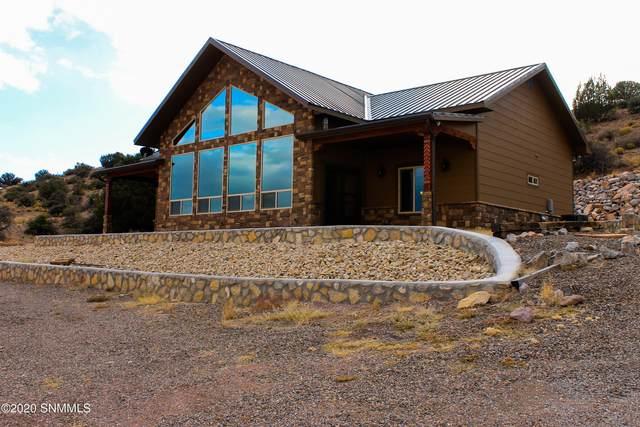 179 Berrenda Road, Hillsboro, NM 88042 (MLS #2003454) :: Agave Real Estate Group