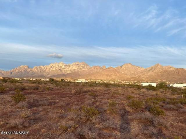 0 Hardrock Road, Las Cruces, NM 88011 (MLS #2003460) :: Better Homes and Gardens Real Estate - Steinborn & Associates