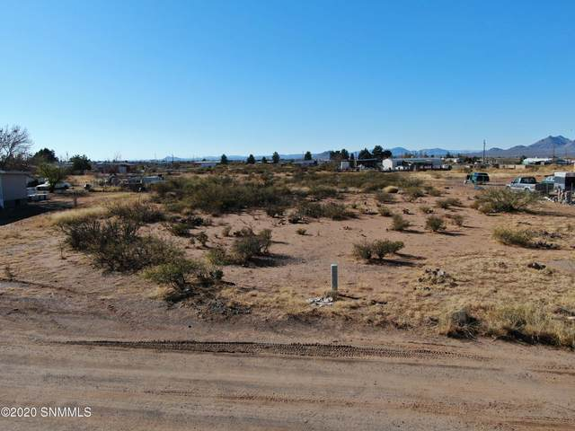 6245 Kyle Road, Las Cruces, NM 88012 (MLS #2003471) :: Better Homes and Gardens Real Estate - Steinborn & Associates