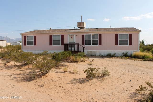9 Tasmania Avenue, Las Cruces, NM 88012 (MLS #2003472) :: Better Homes and Gardens Real Estate - Steinborn & Associates
