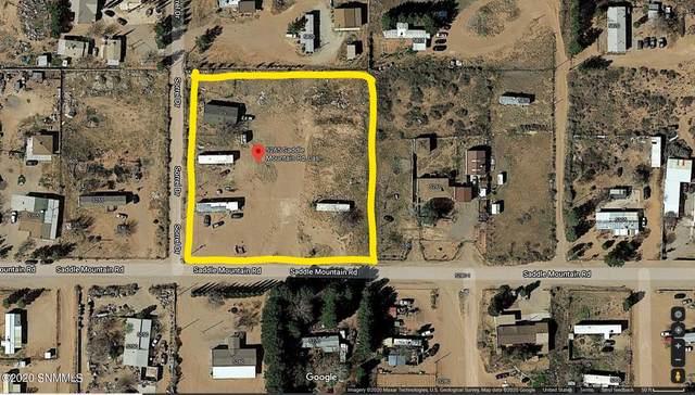 5265 Saddle Mountain Road, Las Cruces, NM 88012 (MLS #2003499) :: Arising Group Real Estate Associates