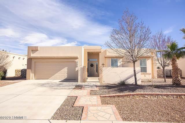 5706 Ireland Drive, Sunland Park, NM 88008 (MLS #2003519) :: Las Cruces Real Estate Professionals