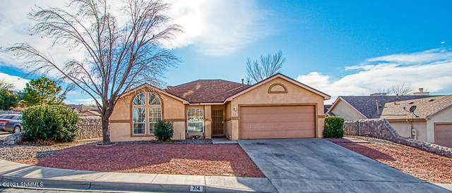 714 City View Drive, Las Cruces, NM 88011 (MLS #2100019) :: Agave Real Estate Group