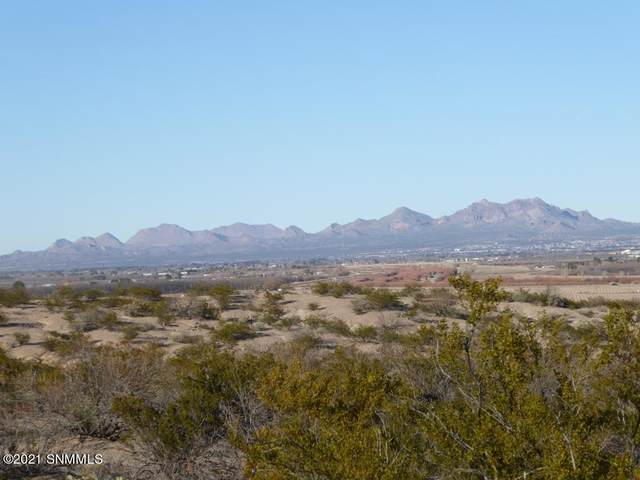5855 Thielman Road, Las Cruces, NM 88005 (MLS #2100024) :: Agave Real Estate Group