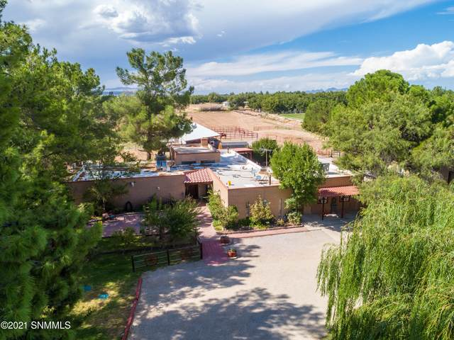 1575 Snow Road, Las Cruces, NM 88005 (MLS #2100039) :: Better Homes and Gardens Real Estate - Steinborn & Associates