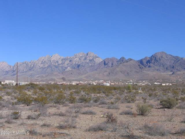 0003 Alamo Mine Trail, Las Cruces, NM 88011 (MLS #2100064) :: Better Homes and Gardens Real Estate - Steinborn & Associates