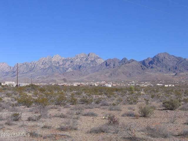 0004 Alamo Mine Trail, Las Cruces, NM 88011 (MLS #2100065) :: Arising Group Real Estate Associates