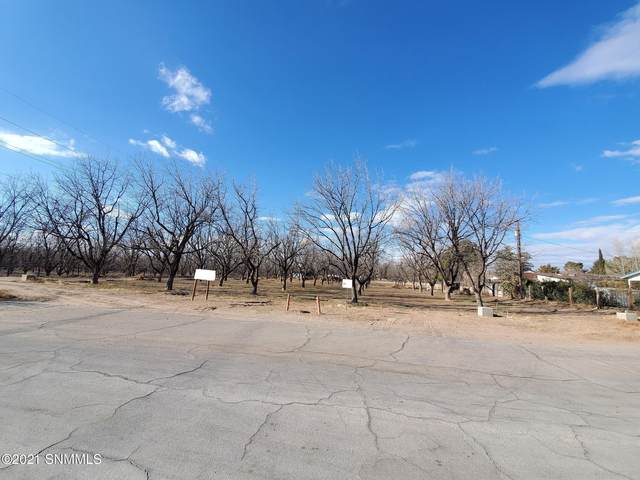 3101 Karen Drive, Las Cruces, NM 88001 (MLS #2100070) :: Better Homes and Gardens Real Estate - Steinborn & Associates
