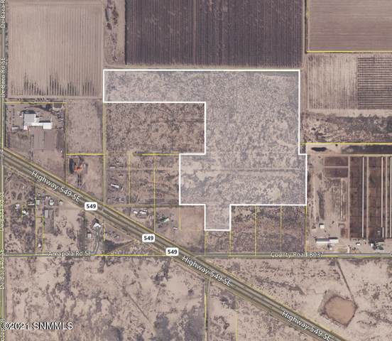 0 SE Deming Road, Deming, NM 88030 (MLS #2100108) :: Better Homes and Gardens Real Estate - Steinborn & Associates