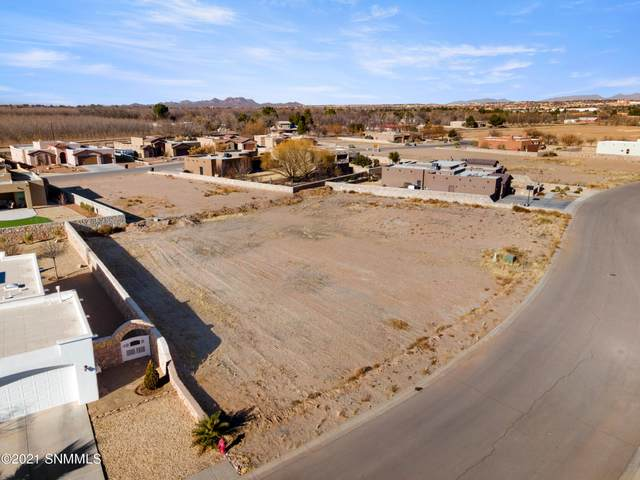 1474 San Bonifacio, Las Cruces, NM 88005 (MLS #2100141) :: Better Homes and Gardens Real Estate - Steinborn & Associates