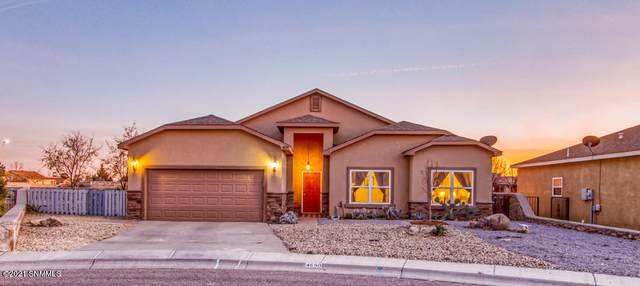 4690 Camino Dos Vidas, Las Cruces, NM 88012 (MLS #2100150) :: Arising Group Real Estate Associates