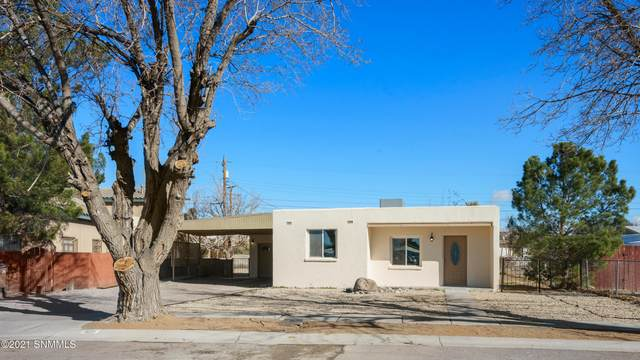 103 E Gallagher Avenue, Las Cruces, NM 88001 (MLS #2100293) :: Las Cruces Real Estate Professionals