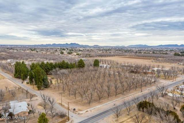 2762 W Union Avenue, Mesilla, NM 88046 (MLS #2100420) :: Las Cruces Real Estate Professionals
