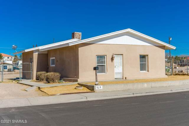 529 E Mulberry Avenue, Las Cruces, NM 88001 (MLS #2100460) :: Better Homes and Gardens Real Estate - Steinborn & Associates