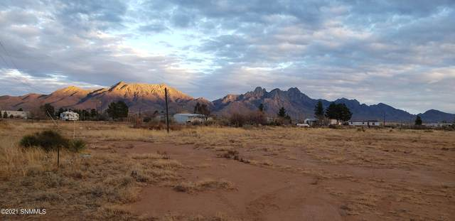1040 Corona Rd. Road, Las Cruces, NM 88012 (MLS #2100492) :: Agave Real Estate Group