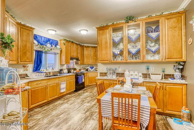 420 E Wicker Road, Chaparral, NM 88081 (MLS #2100516) :: Better Homes and Gardens Real Estate - Steinborn & Associates