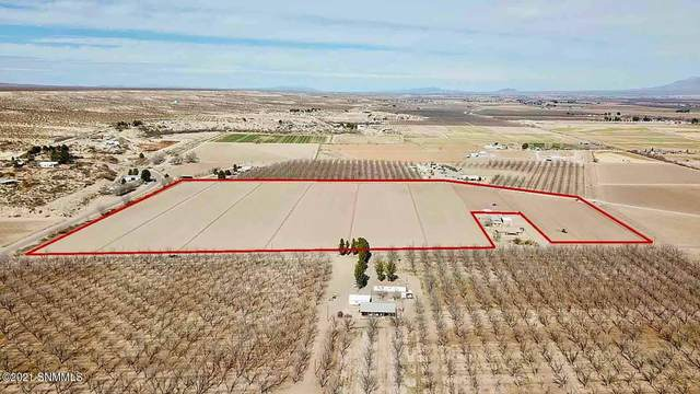TBD Haasville Rd, Anthony, NM 88021 (MLS #2100524) :: Better Homes and Gardens Real Estate - Steinborn & Associates