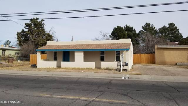 1238 N Mesquite Street, Las Cruces, NM 88001 (MLS #2100601) :: Agave Real Estate Group