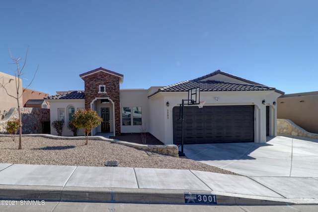 3001 E East Springs Road, Las Cruces, NM 88011 (MLS #2100602) :: Agave Real Estate Group