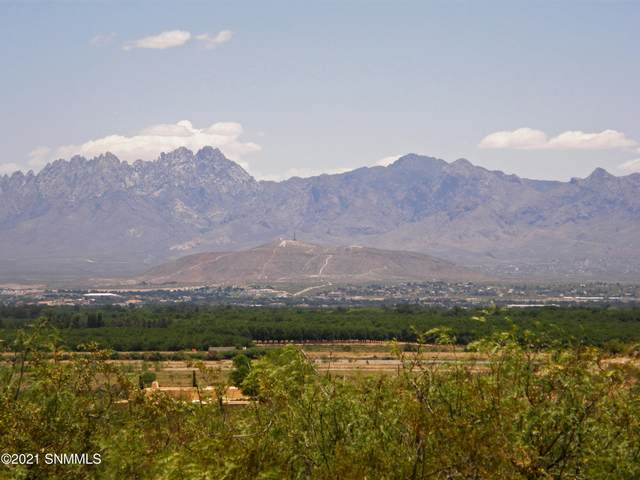 0 Thielman Road, Las Cruces, NM 88005 (MLS #2100615) :: Agave Real Estate Group