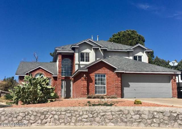 925 Stagecoach Drive, Las Cruces, NM 88011 (MLS #2100637) :: Better Homes and Gardens Real Estate - Steinborn & Associates