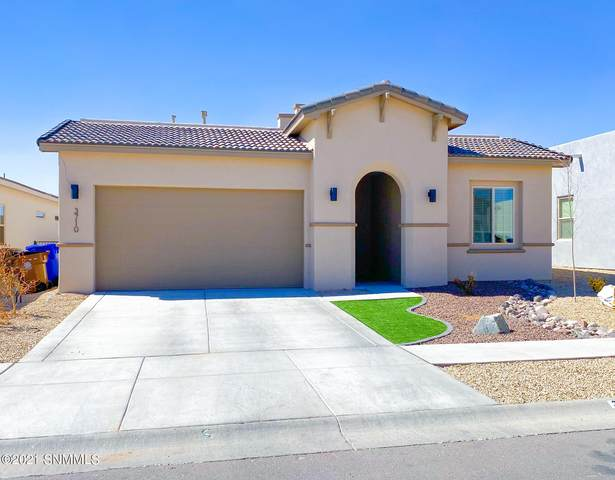 3710 Golden Echo Loop, Las Cruces, NM 88012 (MLS #2100716) :: Agave Real Estate Group