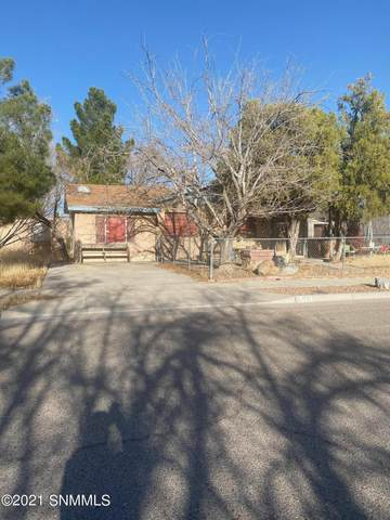 1701 Alamo Street, Las Cruces, NM 88001 (MLS #2100722) :: Agave Real Estate Group