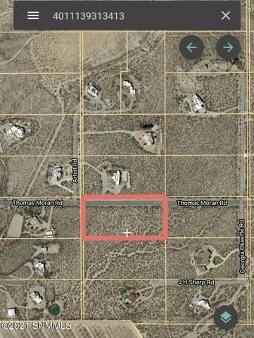 00000 Thomas Moran Road, Las Cruces, NM 88011 (MLS #2100760) :: Better Homes and Gardens Real Estate - Steinborn & Associates