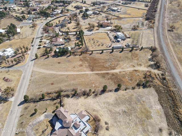 4255 Appaloosa Drive, Sunland Park, NM 88008 (MLS #2100774) :: Agave Real Estate Group