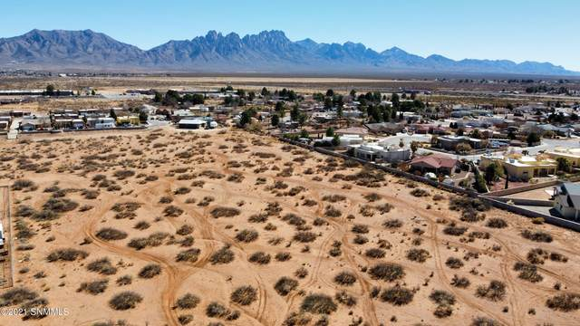 TBD Peachtree Hills Road, Las Cruces, NM 88012 (MLS #2100888) :: Better Homes and Gardens Real Estate - Steinborn & Associates