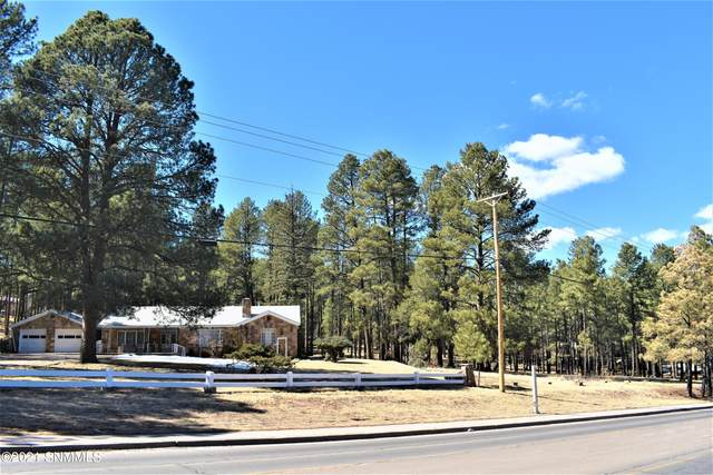 603 Mechem Drive, Ruidoso, NM 88345 (MLS #2100892) :: Better Homes and Gardens Real Estate - Steinborn & Associates