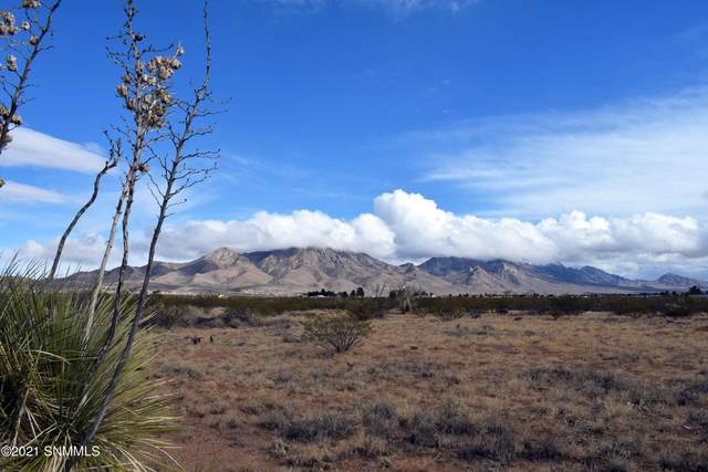 7050 Macarthur Road, Las Cruces, NM 88012 (MLS #2100965) :: Better Homes and Gardens Real Estate - Steinborn & Associates