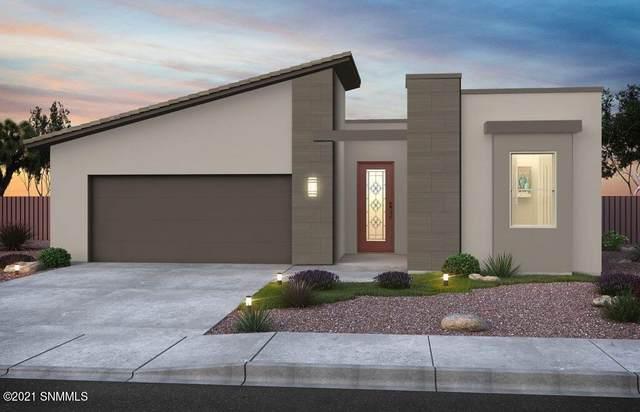 2663 Petaluma Avenue, Las Cruces, NM 88011 (MLS #2101003) :: Better Homes and Gardens Real Estate - Steinborn & Associates
