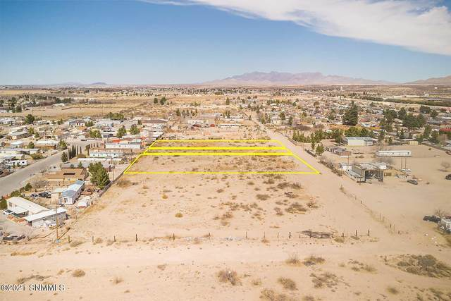 1519 Igou Road, Anthony, NM 88021 (MLS #2101018) :: Better Homes and Gardens Real Estate - Steinborn & Associates