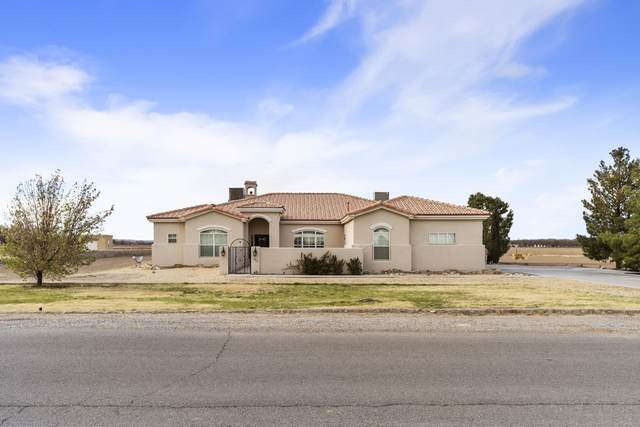 111 Calle Delphia, Anthony, NM 88021 (MLS #2101027) :: Las Cruces Real Estate Professionals