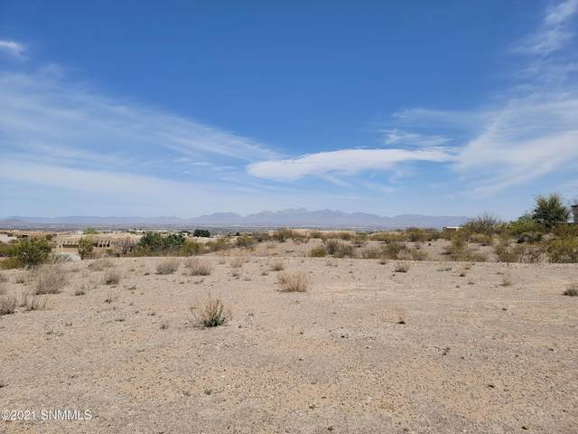 8041 Renoir Loop, Las Cruces, NM 88007 (MLS #2101063) :: Better Homes and Gardens Real Estate - Steinborn & Associates