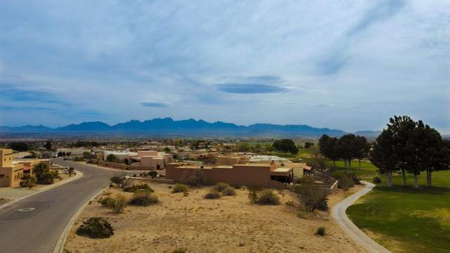 7145 Camino Blanco, Las Cruces, NM 88007 (MLS #2101065) :: Better Homes and Gardens Real Estate - Steinborn & Associates