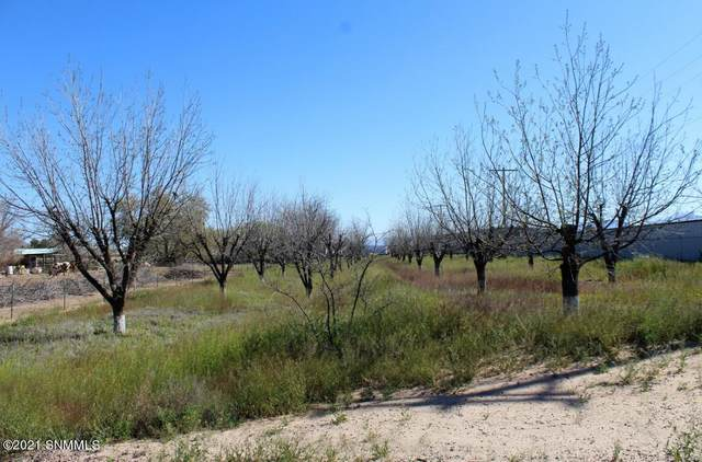 410 Old Hwy 292, Las Cruces, NM 88005 (MLS #2101107) :: Better Homes and Gardens Real Estate - Steinborn & Associates