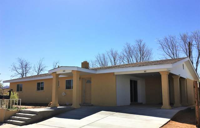 430 Texas, Las Cruces, NM 88001 (MLS #2101110) :: Agave Real Estate Group